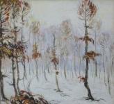 Zimní háj