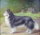 Alois Procházka - Pes