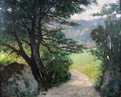 Albert Müller - Cesta mezi stromy a kameny
