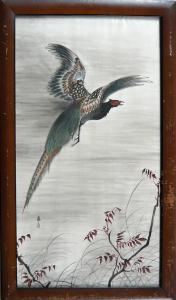 Letící bažant - Japonsko (1).JPG