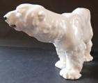 Lední medvěd - Míšeň, Otto Jarl (2).JPG
