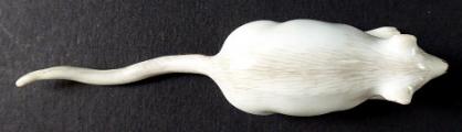 Porcelánová myška - Míšeň (3).JPG