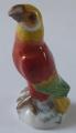 Žlutý, červený a zelený papoušek - Míšeň (1).JPG