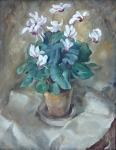Petr P. Matýsek - Bramboříky v květináči