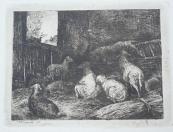Jan Nowopacký - V ovčírně