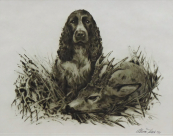 Alesa Vaic - Hunting dog with a roe