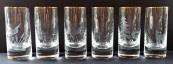 Šest vysokých skleniček, s lesní zvěří a ptactvem - Moser
