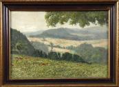 Antonín Augusta - Louka s vlčími máky, pohled do krajiny a poli