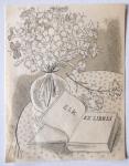 Cyril Bouda - Zátiší s knihou a květinami