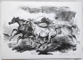 Emil Kotrba - Tři pádící koně