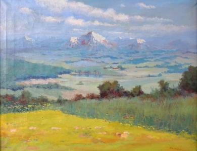 Horáček - Letní louka s horami v pozadí (2).JPG