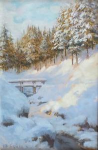 Vít Skála - Zima (2).JPG