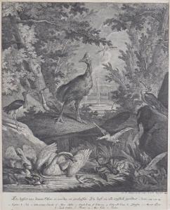 Johann Elias Ridinger - Ptáci u vody (2).JPG