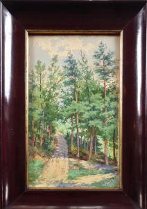 Šíma - Lesní cesta (1).JPG