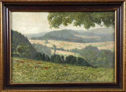 Antonín Augusta - Louka s vlčími máky, pohled do krajiny s poli (1).JPG