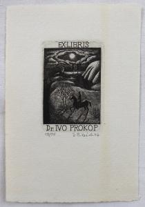 Jindřich Pileček - Ex libris Dr. Ivo Prokop (1).JPG