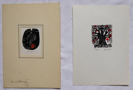 Anna Grmelová - Akt u stromu, Dívčí hlava (1).JPG